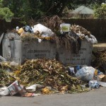 Refuse dumps like this are a common feature in Calabar now
