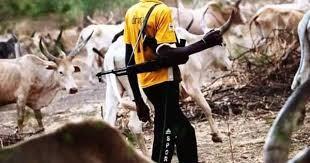 Fulani Herdsmen Storm Cross River Village