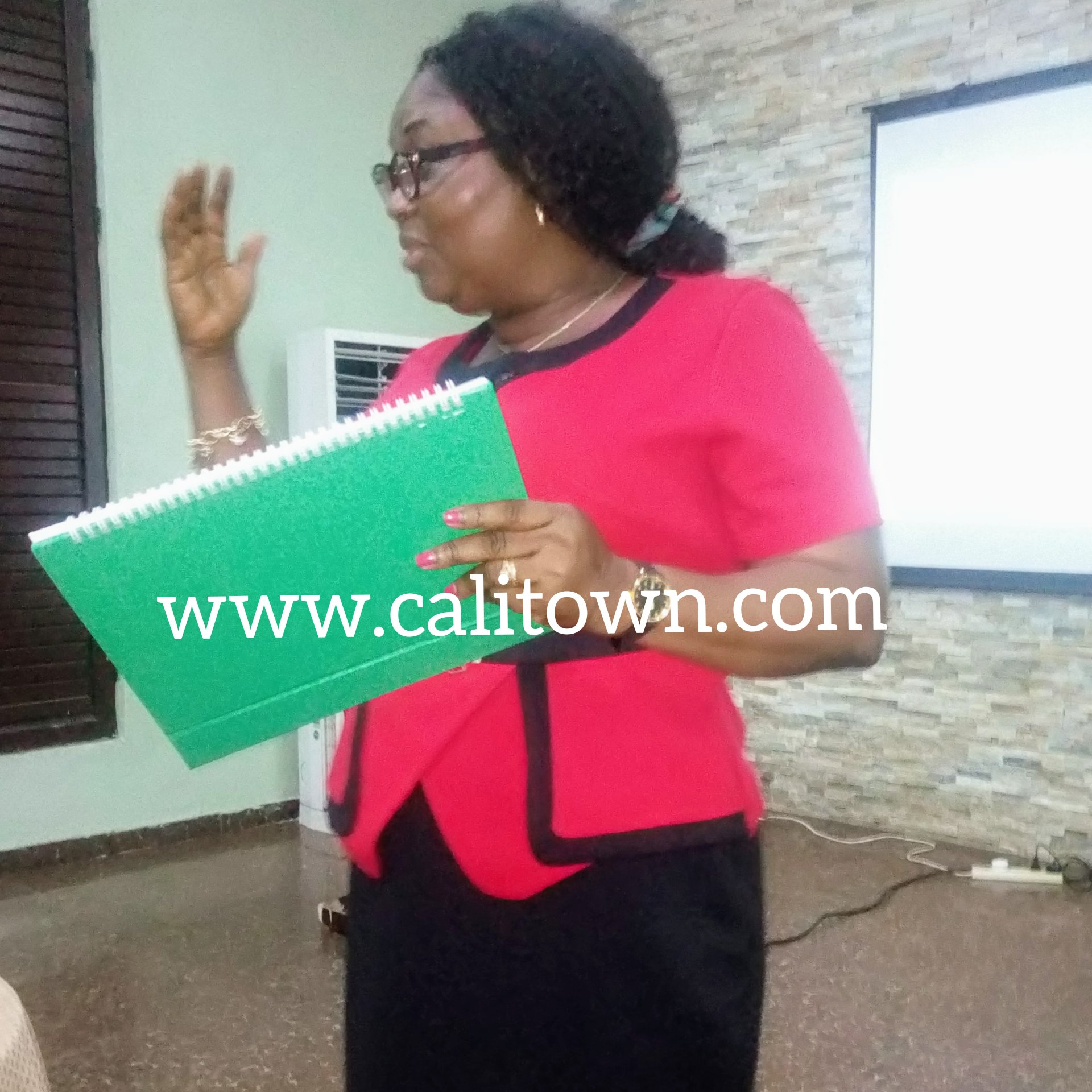 """""""Only 59% Of Women In CRS Deliver In Hospitals"""" – Director, CR PHCDA"""